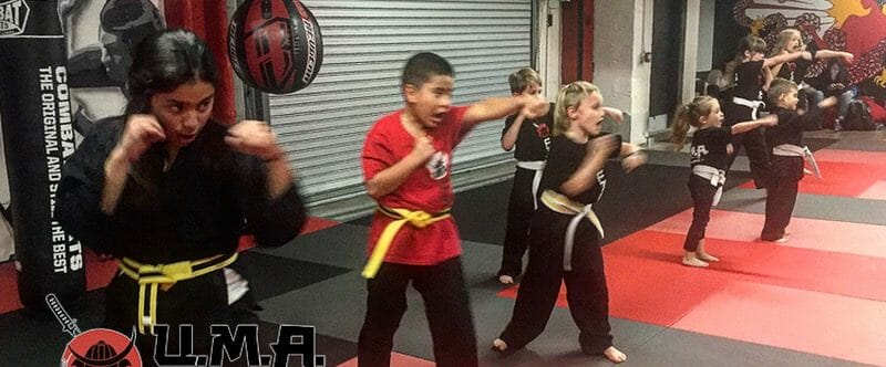 Brooklyn Martial Arts Little Dragons for Children