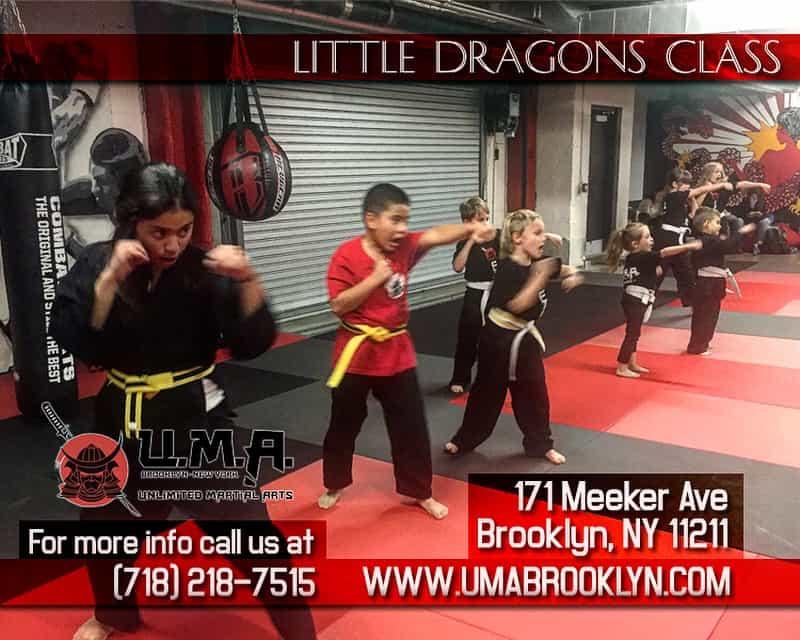Unlimited Martial Arts Brooklyn Children's Martial Arts
