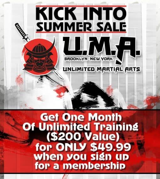 Unlimited Martial Arts Brooklyn