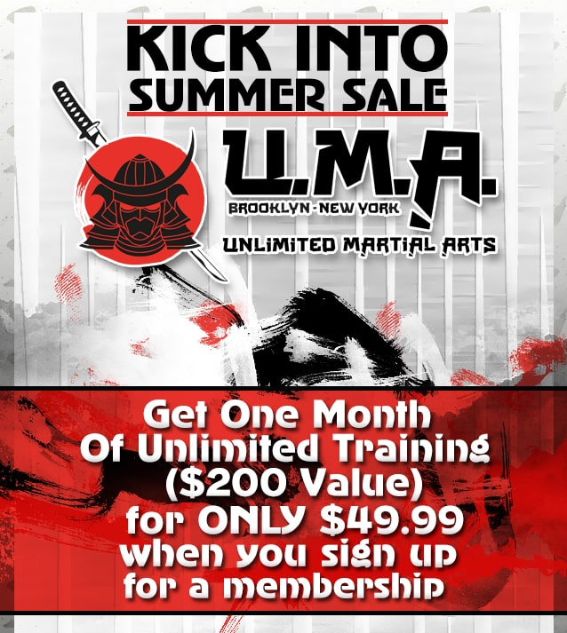Unlimited Martial Arts Brooklyn